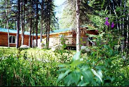 Modern and comfortable cabins for rent on Alaska's Kenai Peninsula