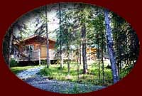 Private cabins in wooded settings