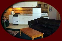 Comfortable and modern cabins for rent on the Kenai Peninsula
